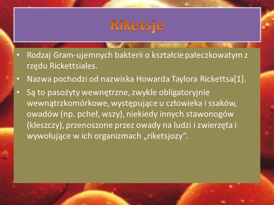 Riketsje Rodzaj Gram-ujemnych bakterii o kształcie pałeczkowatym z rzędu Rickettsiales. Nazwa pochodzi od nazwiska Howarda Taylora Rickettsa[1].